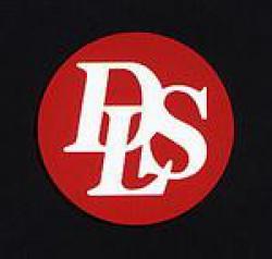 Акустика DLS под заказ (3)